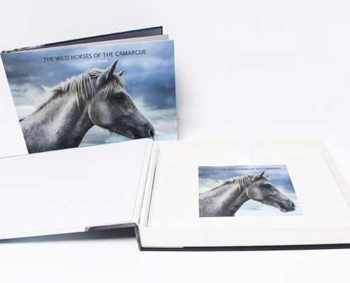Boxed video book